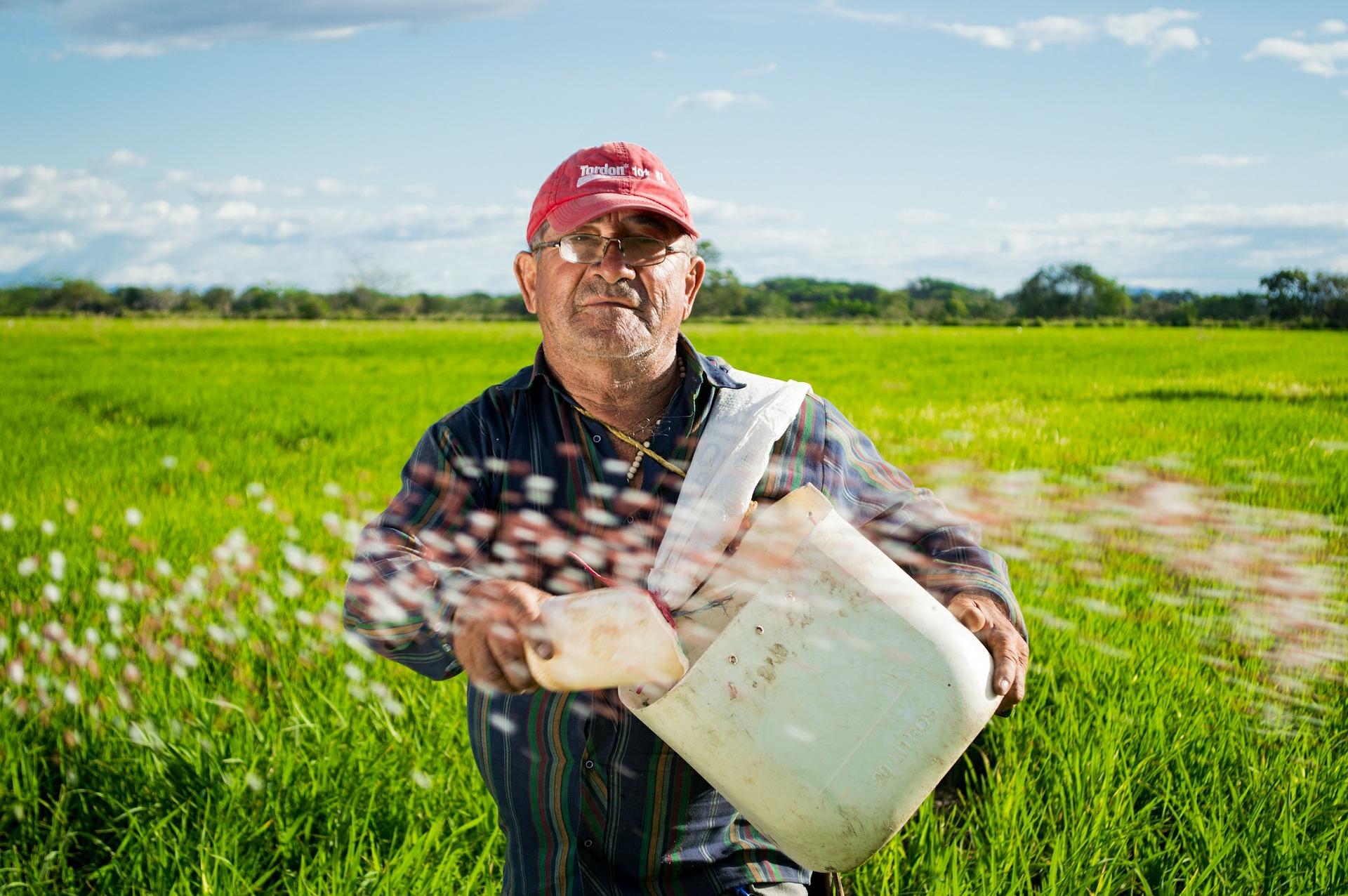 Deputado quer expandir uso de energia solar na agricultura familiar no Mato Grosso